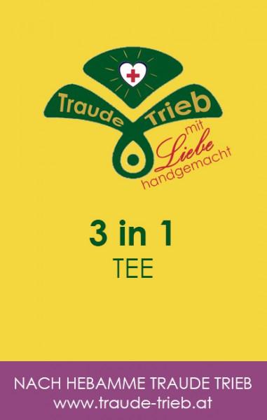 3 in 1-Tee